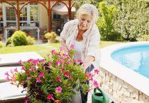 Faire garder sa maison par des retraités pendant les vacances