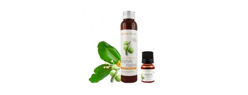 Aromazone Huile végétale de Calophylle B